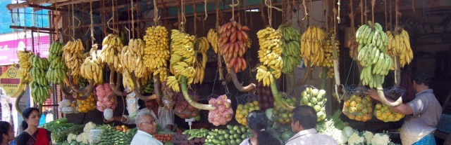Different banana varieties on sale in India