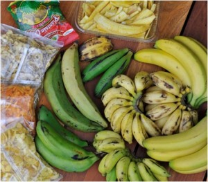 Six varieties of banana and various chips bought in Leicester: there are more types of banana than the Cavendish variety that is universal in Western shops!