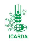 ICARDA_Logo_h_new