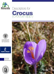 Descriptors for Crocus species morphology